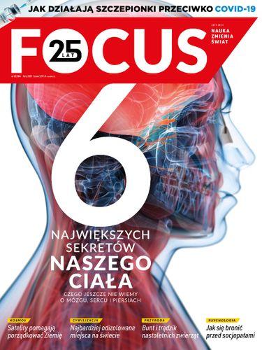 Focus 2/2021