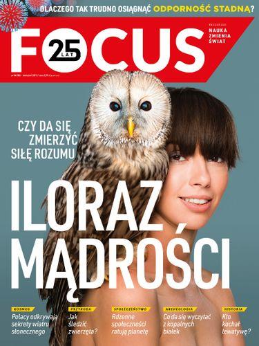 Focus 4/2021