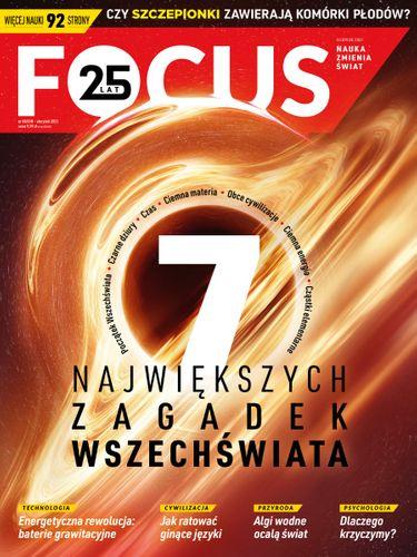 Focus 8/2021