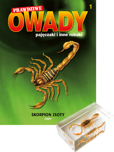 Prawdziwe owady, pajęczaki i inne robaki - TOM 1