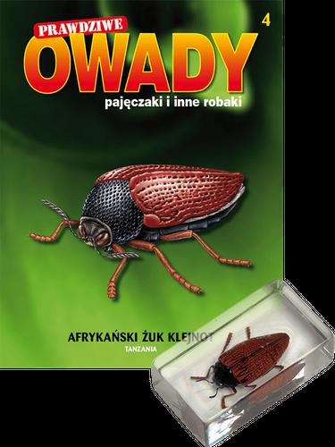 """Prenumerata """"Prawdziwe owady, pajęczaki i inne robaki"""" od tomu 4. Przesyłka cz. 4 i 5 (tom 5 GRATIS!)"""