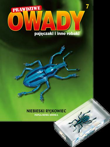 """Prenumerata """"Prawdziwe owady, pajęczaki i inne robaki"""" od tomu 7. Przesyłka cz. 7, 8, 9 i 10"""